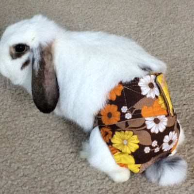 bunny diapers, bunny nappies